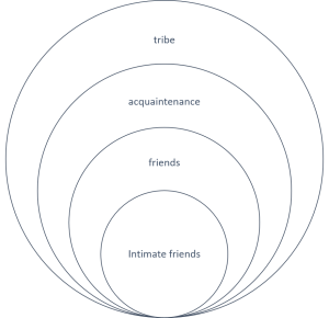 circle of friends, social dimension